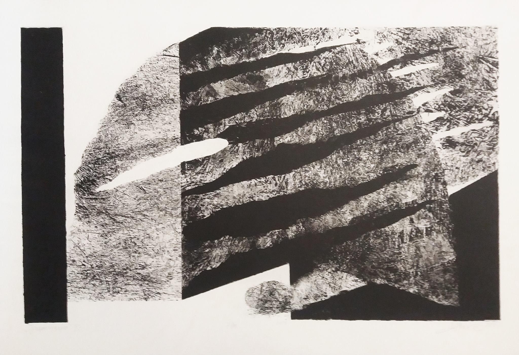 Denica VESELINOVA JANEVA (1974) Bulgaria Fragmentation II, 2015 Graphics, 70 x 100 cm
